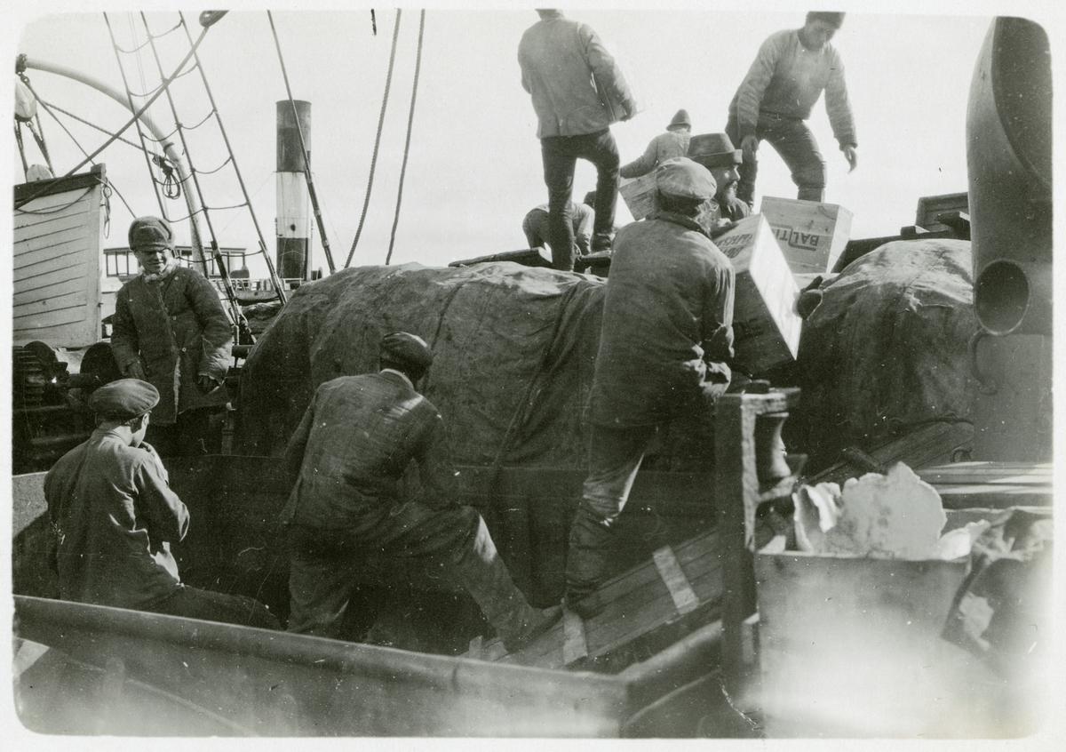 Lasten på Halvar lossas i Obviken år 1919 av ryssar samt tyska och österrikiska krigsfångar.