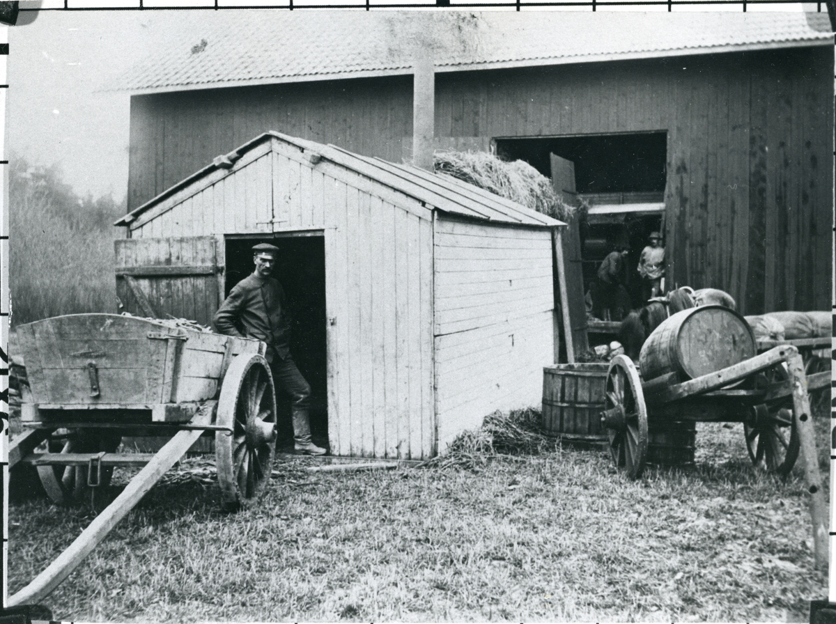 Norrby socken, Sala, Varmsätra.  Anders Olsgården. Tröskning, c:a 1917.