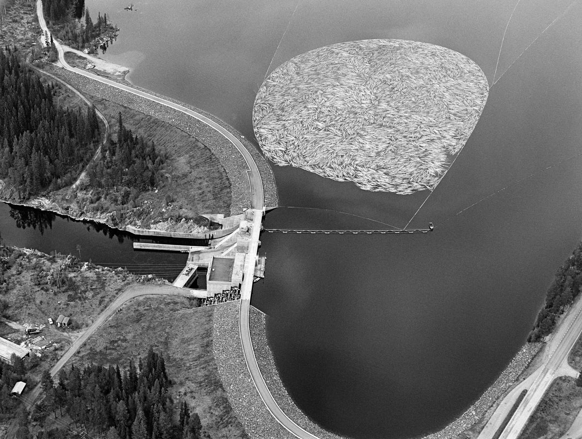 Flyfotografi av tømmerbom i den ytre (sørvestre) enden av Løpsjøen, en oppdemt del av elva Søndre Rena i Åmot kommune i Hedmark.  Fotografiet er tatt i mai 1984, den siste sesongen det var tømmerfløting i denne delen av Glommavassdraget.  Løstømmer fra områder høyere oppe i vassdraget var altså samlet i en ringbom av sammenkjedete tømmerstokker, som i sin tur er omgitt av ledelenser som skulle forebygge at tømmeret la seg mot land (strendene).  Vi skimter også ei lense som går vinkelrett ut fra damkonstruksjonen.  Den skulle bidra til at stokkene – når fløterne var klare for det – kunne slippes mot det såkalte «tømmerløpet» i dammen.  Dette er en kraftverksdam som utnytter vann fra Søndre Rena (inkludert vann som kommer i dette vassdraget fra Glomma via Rendalen kraftverk) og Søndre Osa.  Kraftverket er en fyllingsdam med flomløp og fisketrapp.  Fra åpningen i 1971 til fløtinga ble avviklet i 1984 hadde anlegget, som nevnt, også et tømmerløp.  Løpet kraftverk utnytter en fallhøyde på 19 meter.  Det er utstyrt med en kaplanturbin som yter 24 megawatt.  Øverst til høyre i bildet, langs Løpsjøens strandlinje, ser vi Fylkesveg 216 mellom Rena i Åmot og Jordet i Trysil, her kalt «Haugedalsvegen».  Vegen over damkrona var en samleveg for flere skogsbilveger i utmarka mellom Søndre Rena og Glomma, et område som etter åpningen av Rena leir i 1997 er blitt preget av militær aktivitet.