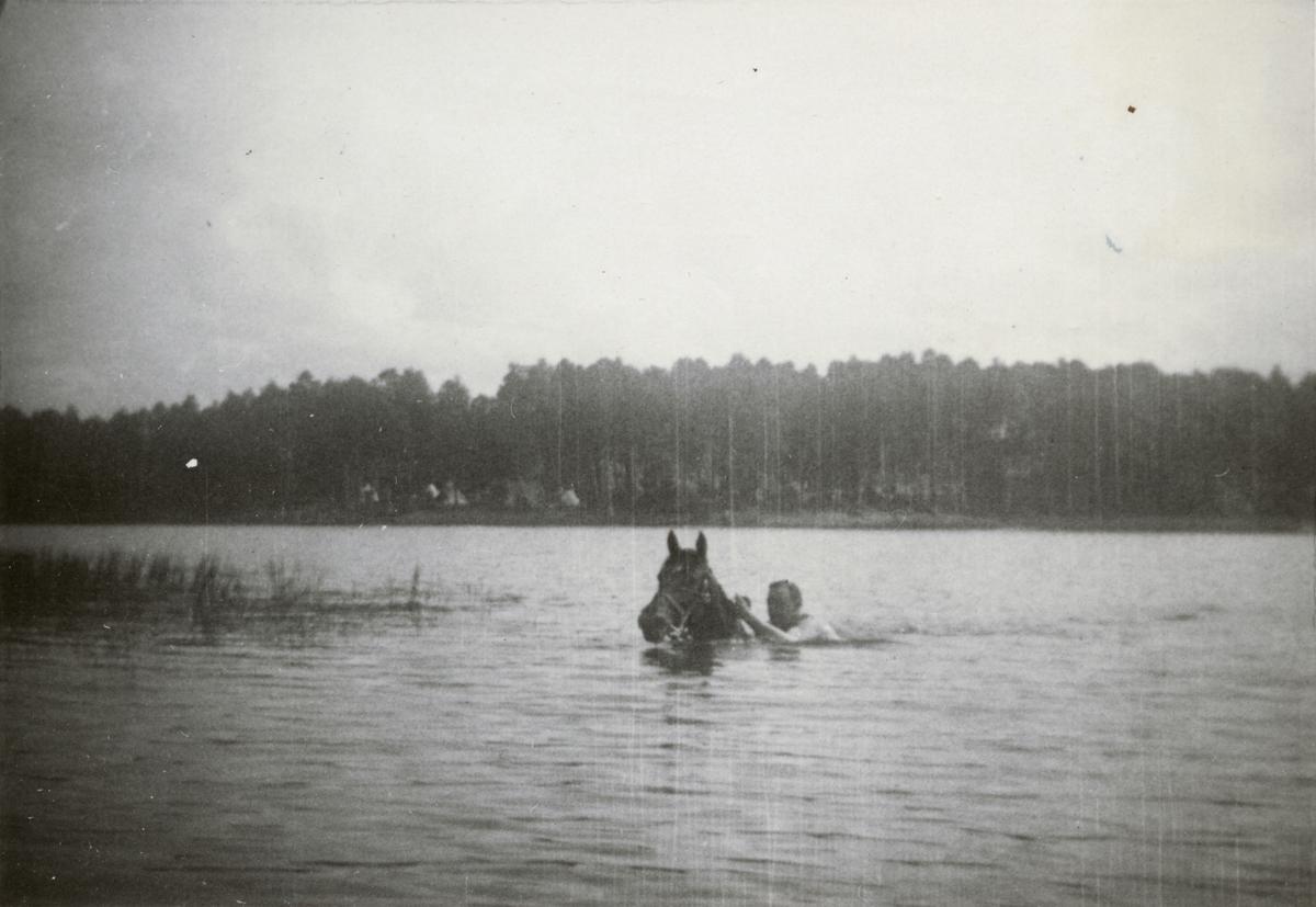 """Text i fotoalbum: """"Sommarmarschen 1937 till Varnum (norr Ulricehamn). Simning med häst""""."""