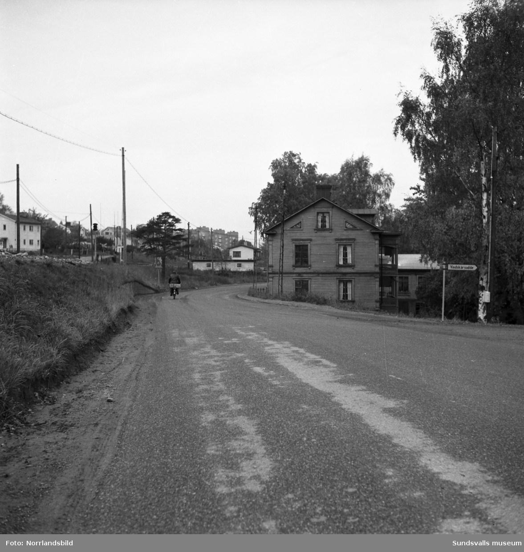 Landsvägsallén, Skönsmon, vid nedfarten mot Vindskärsudde.