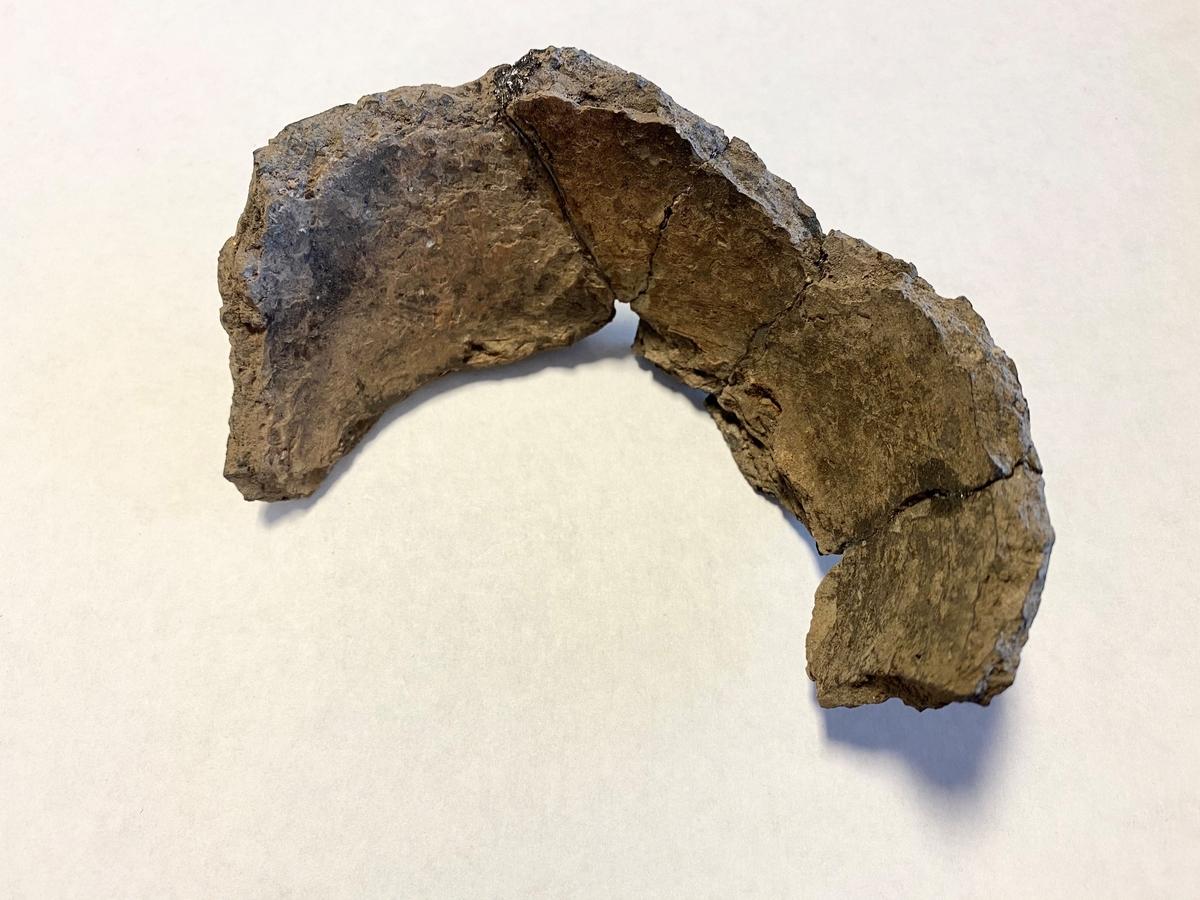 Sammanlagt fem buk-/bottenfragment av ett keramikkärl (sammanlimmade). I rännan som omgärdade delar av boplatsens Hus 8, framkom keramikskärvor som kunde passas ihop.