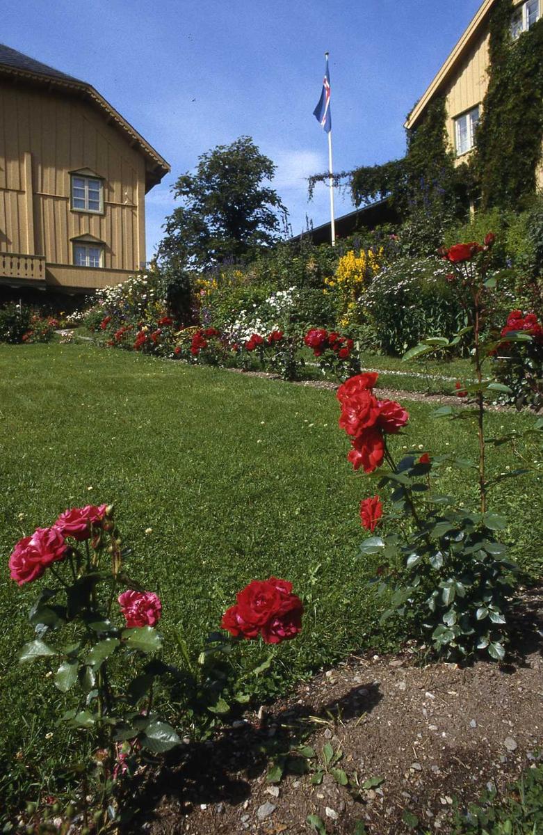 DOK:1990, hage, blomsterbed, hus, sommer, plen,