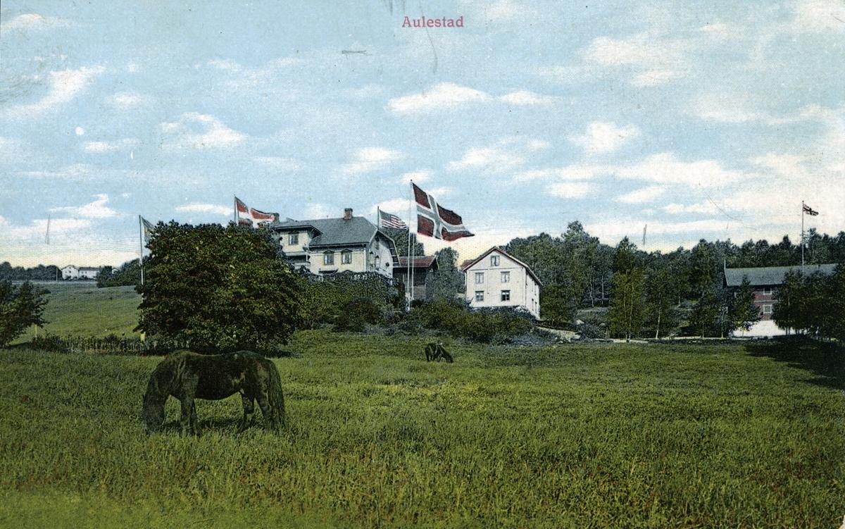 Aulestad, hest, jorde, flagg, postkort