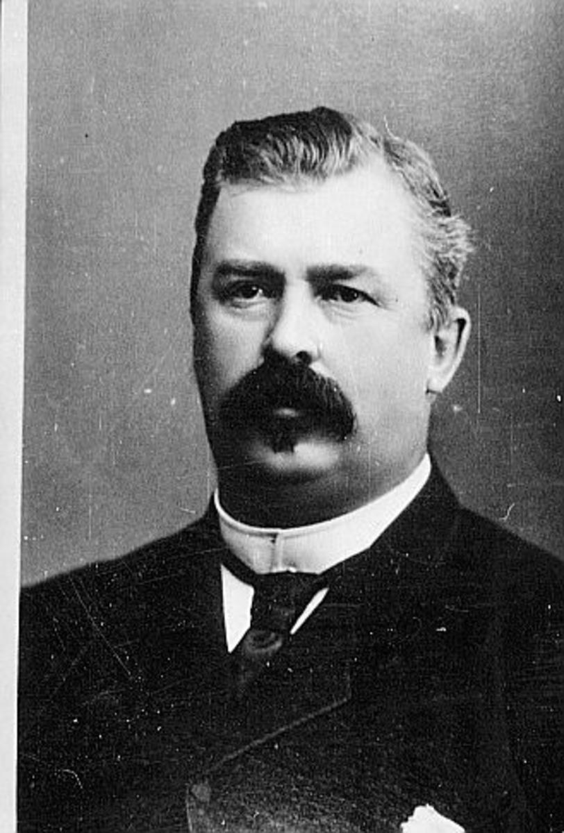 statsråd, Thorne Johan Henrik Paaske, portrett