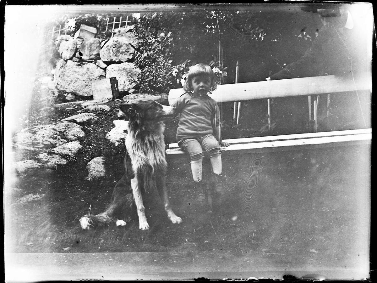 Barn, hund, benk, mur