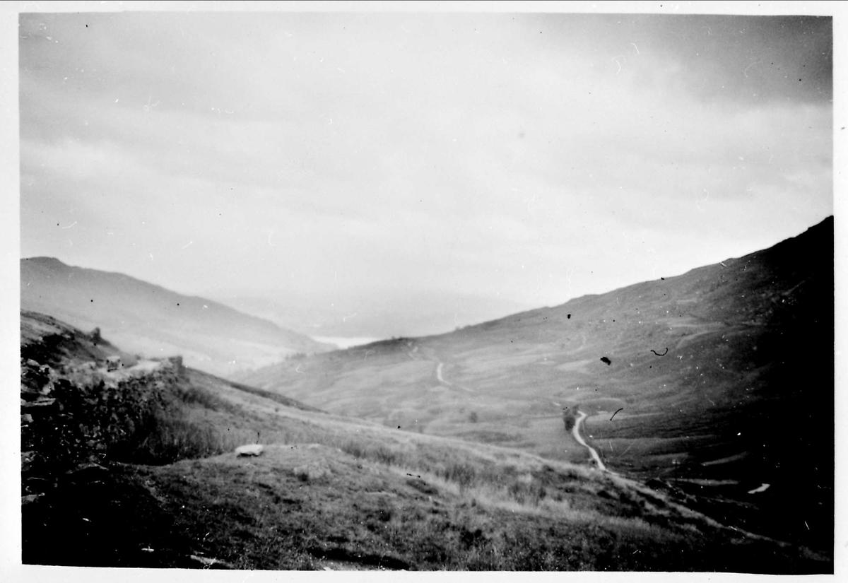 Landskap, fjellparti, høyde, ås