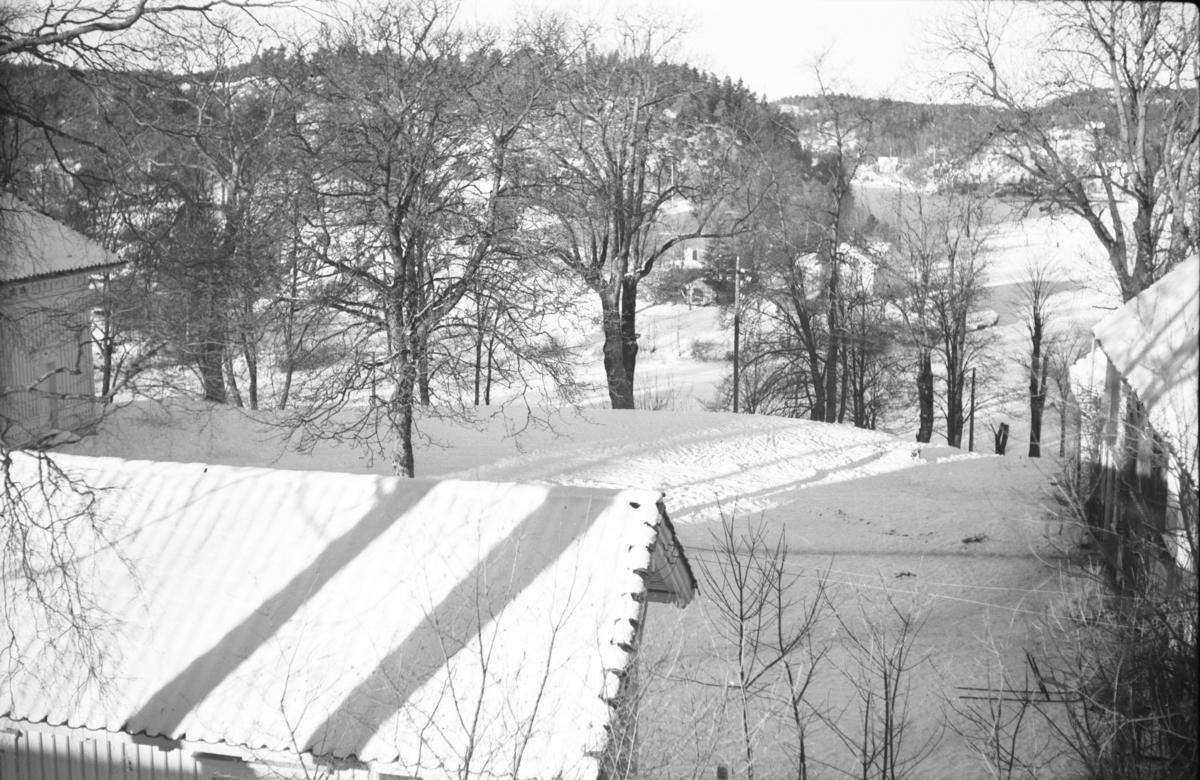 Langsæ gård, tunområdet sett fra det syd-østre hjørne. Våningshuset t.v. , uthuset t.h. Taket på drengestuen i forgrunnen. I Bakgrunnen Langsævannet.  I våningshuset var det husmorskole, i uthuset hodlt Arendal Yrkesskole til.