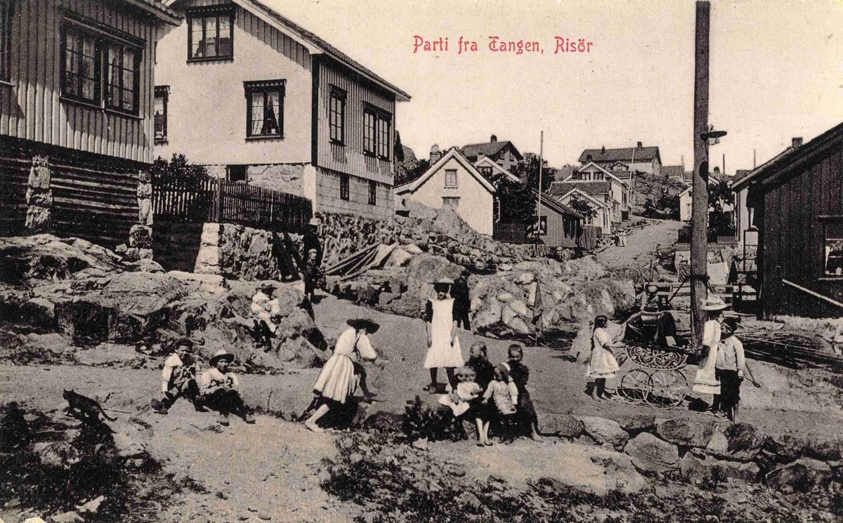 Parti fra Tangen
