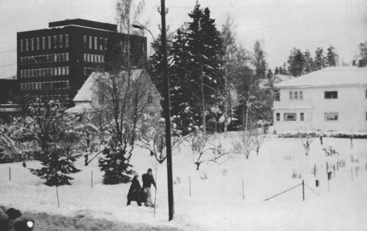 Rådhuset, lensmann Westgaards hus og Glitne.