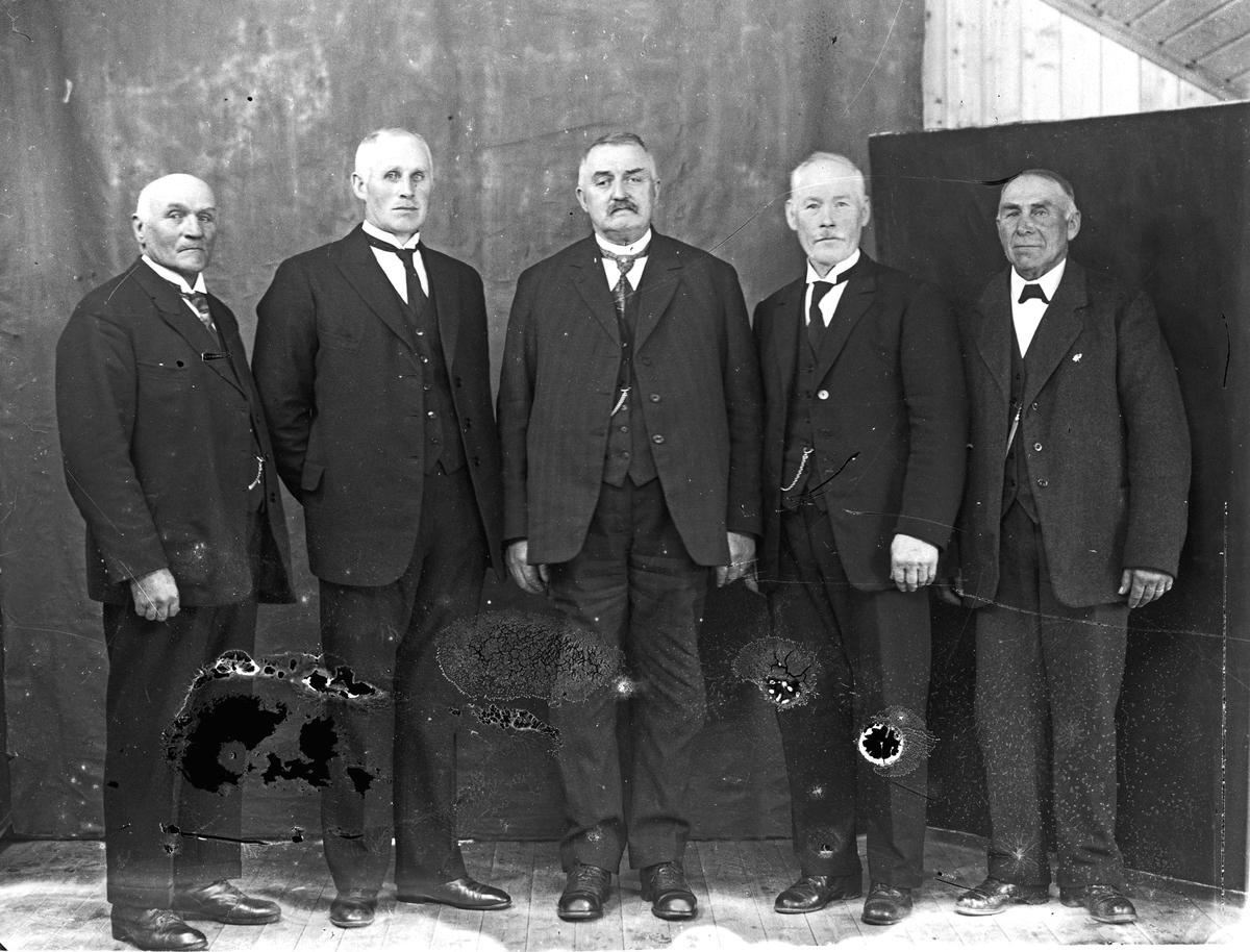 5 eldre herrer.