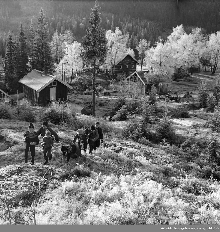Bjørnholt skole,.november 1956