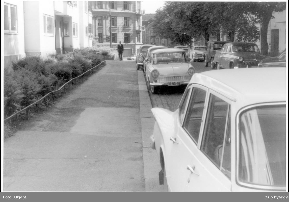 Forhager med buskvegetasjon. Biler parkert langs fortauskant. Sannsynlig fra 1960-tallet.