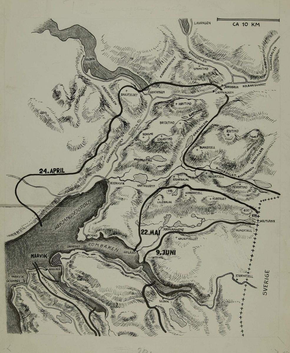 kart over narvik Kart over frontlinjen ved kampenes avslutning innenfor Narvik 8