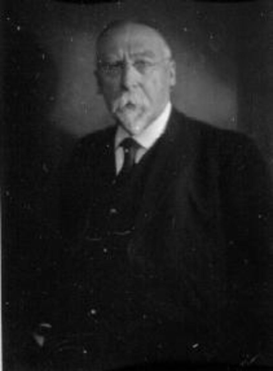 Portrett av kunstner Johan Nordhagen (1856-1956) fra Veldre, Ringsaker.