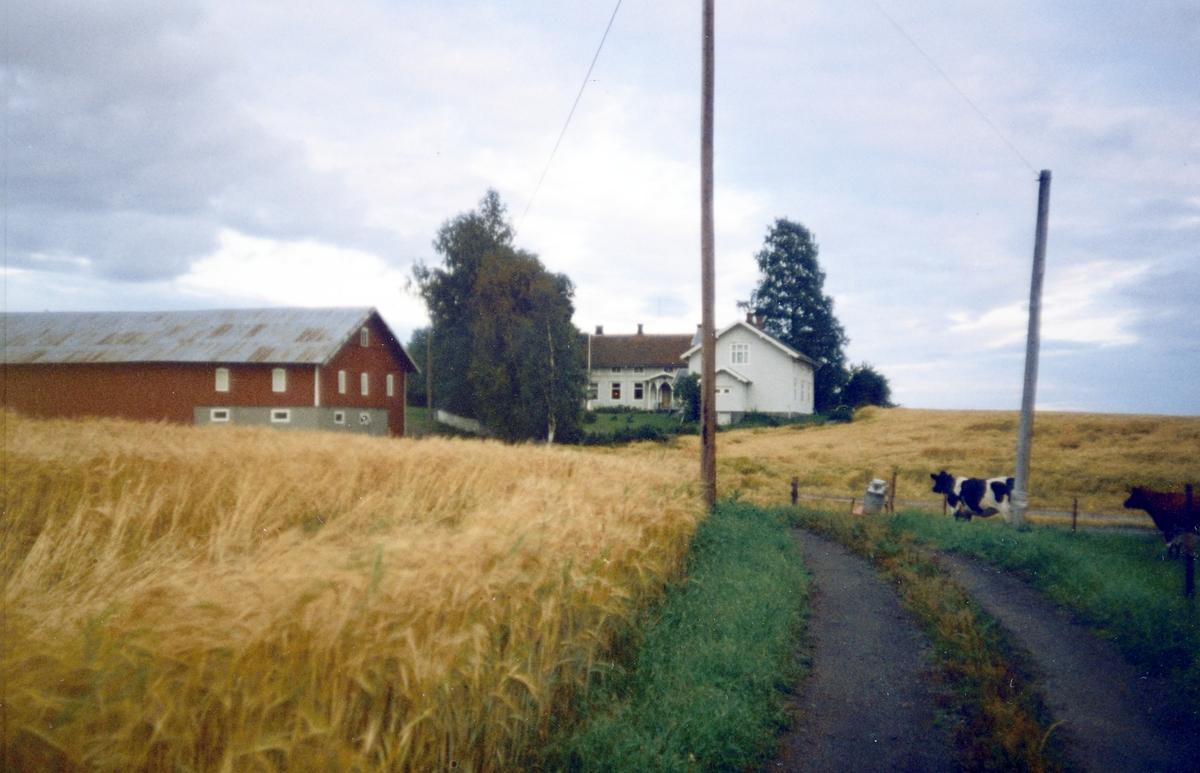 Vestre Blystad. 73/1 Vang H. på 1990-tallet.
