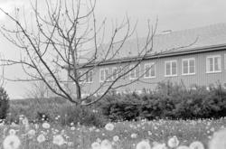 Kise forsøksgård, Nes, Hedmark. Internatet.