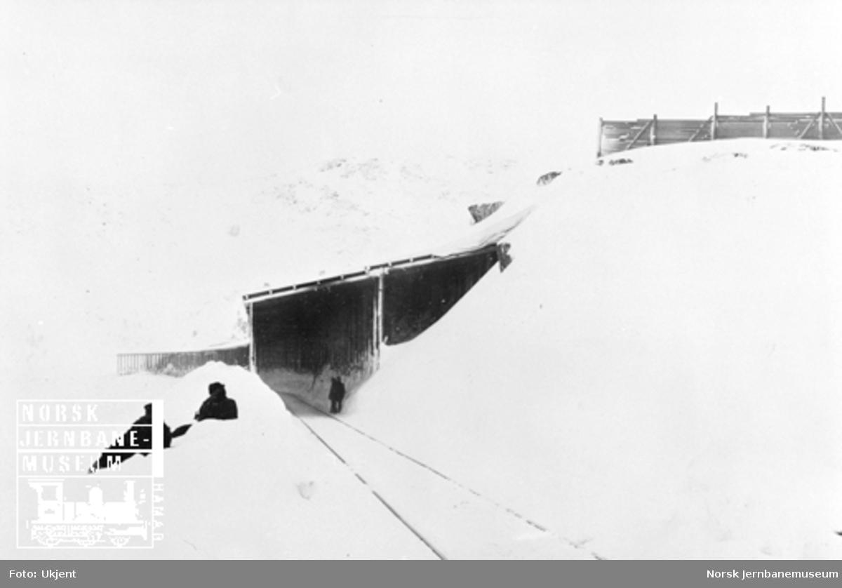 Snøoverbygg og snøskjermer ved km 39