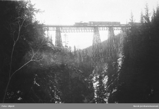 Drøia viadukt med tog på brua