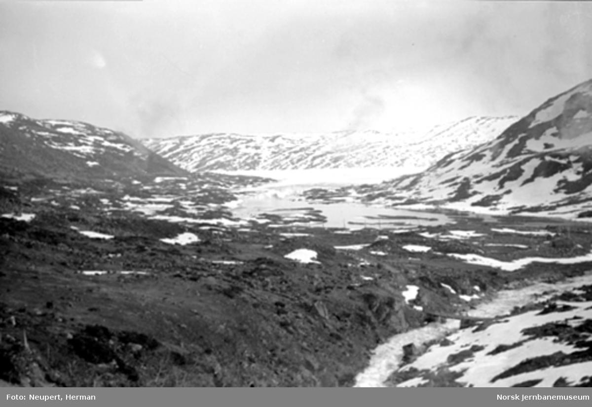 Utsikt fra toget på Bergensbanens strekning Hallingskeid-Myrdal