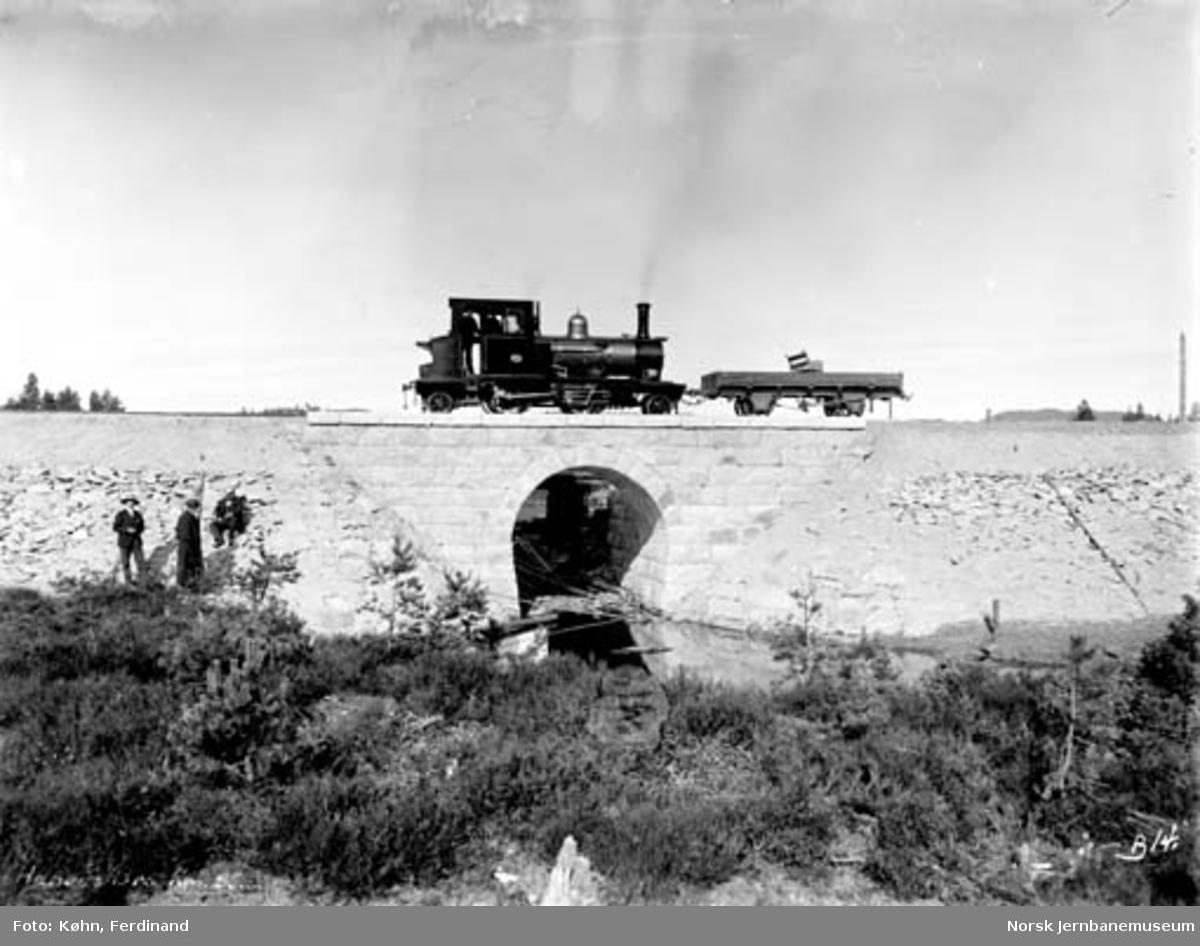 Hanåsbekken bru med tog