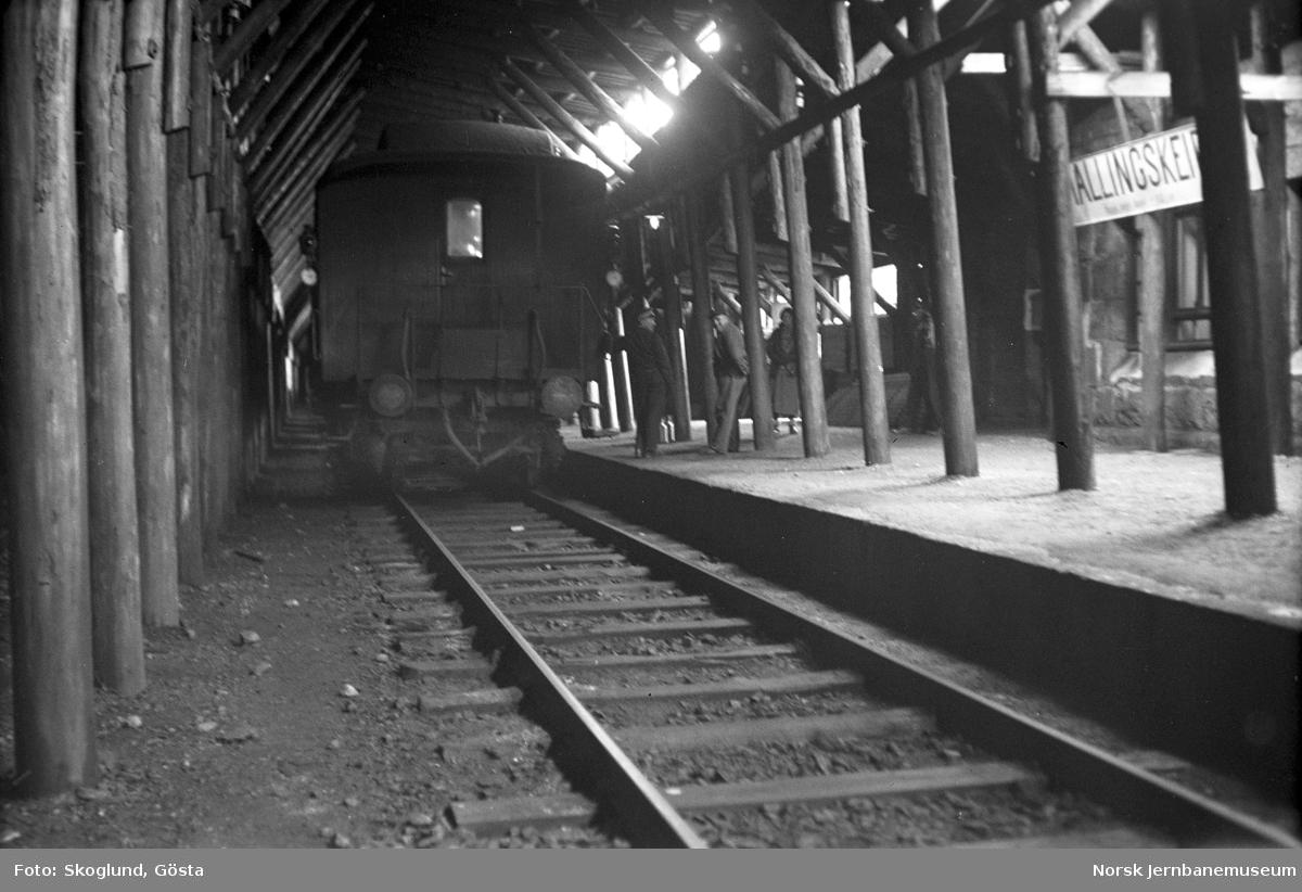 Tog på Hallingskeid stasjon