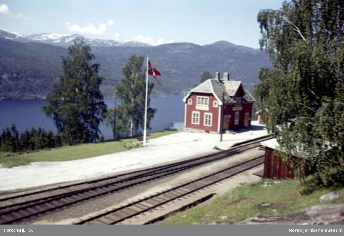 Ørgenvika stasjon