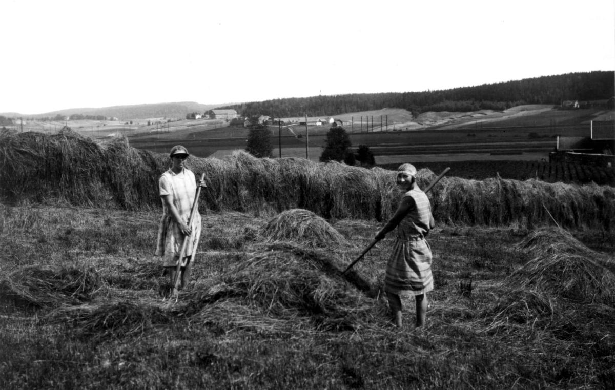 Høying,  Østfold. 1930. To kvinner foran hesje. Jorder. Gårdsanlegg i bakgrunnen. Skog.