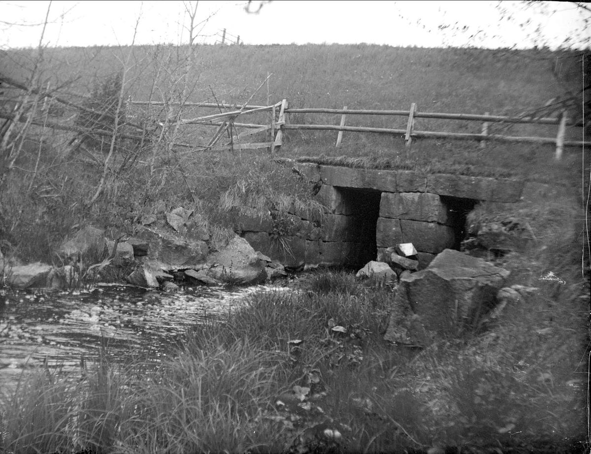 Forsbyån i Knivsta socken, Uppland juni 1927