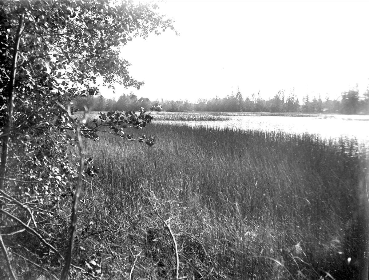 Karmdammen, Dannemora socken, Uppland augusti 1933