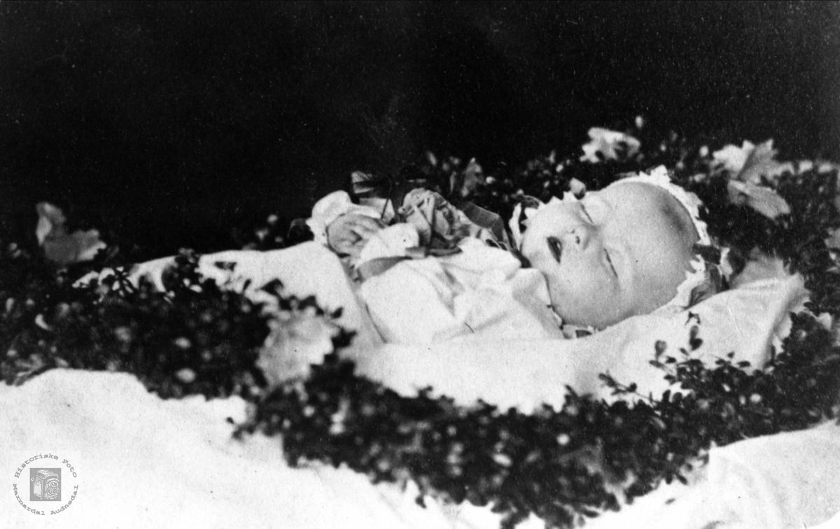 Barn på likstrå. Marthe Heddeland, Øyslebø.