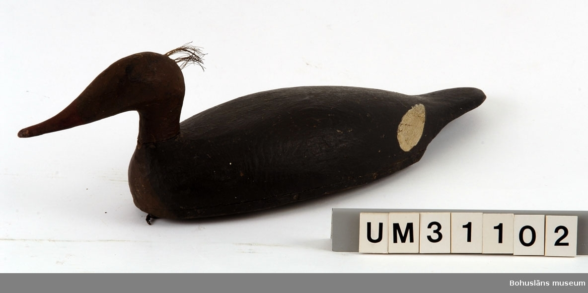 Föremålet visas i basutställningen Kustland,  Bohusläns museum, Uddevalla.  Vette i modell av småskrakehona. Urholkad skuren kopp fastspikad mot platta med fastsatt  huvud. Kroppen fastspikad mot platta. På bakhuvudet fästat en tofs av glest hästtagel. Målad med svart linoljefärg, på kroppen, brund huvud och bröstparti, vita fläckar vid vingarna och  näbben röd.  På undersidan två metallöglor.   Ingår i den samling av nio sjöfågelvettar som Bernhardson samlat och möjligen också själv använt vid sjöfågeljakt. Man kan tyda undersidans anteckningar som att samtliga vettar utom UM31105 och UM31106 (ejderhanar) är tillverkade av samma person, Österberg på Käringön. Troligen avses: Österberg, Laurentz Simon Gottfrid Grönskhult Stora, Sälvik Död 2/12 1962. Kyrkobokförd i Skaftö, Skaftö kn (Göteborgs och Bohus län, Bohuslän). Född 22/11 1872 i Käringön (Göteborgs och Bohus län, Bohuslän). Gift man (3/11 1928). Uppgifter ur Sveriges Dödbok 1943-2000.  Se artikel i Bilagepärmen UM17525 om sjöfågelvettar ur Trä och Textil 2/1984 samt UM31101 för artikel ur Jakt 1967 (se nedan).  Litt: Brusewitz, Gunnar: Sjöfågeljakt. Artikel ur Jakt, 1967. Englund, Lars: Vettar och sjöfågeljakt. Nautiska förlaget AB 2007.