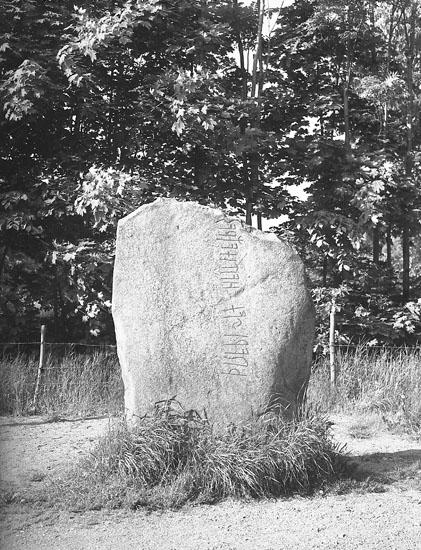 """Enligt AB Flygtrafik Bengtsfors: """"Tanum sten Bohuslän"""".            ::"""