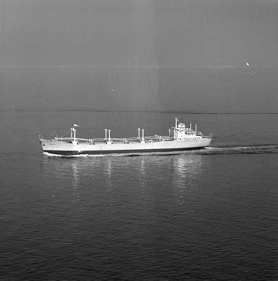 B/C Thorsodd DWT. 18.110 Rederi A/S Thor Dahl, Sandefjord Norge Kölsträckning 61-06-01 Nr. 253 Leverans 62-03-06 Bulkfartyg