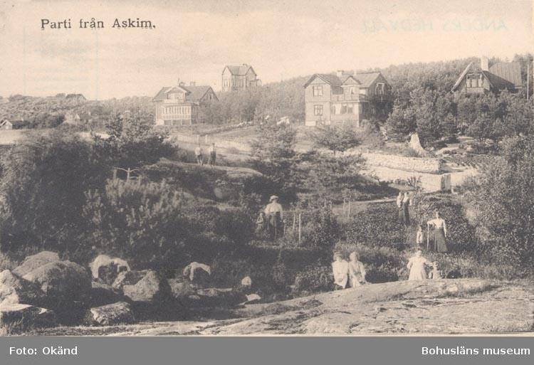 """Tryckt text på kortet: """"Parti från Askim""""."""