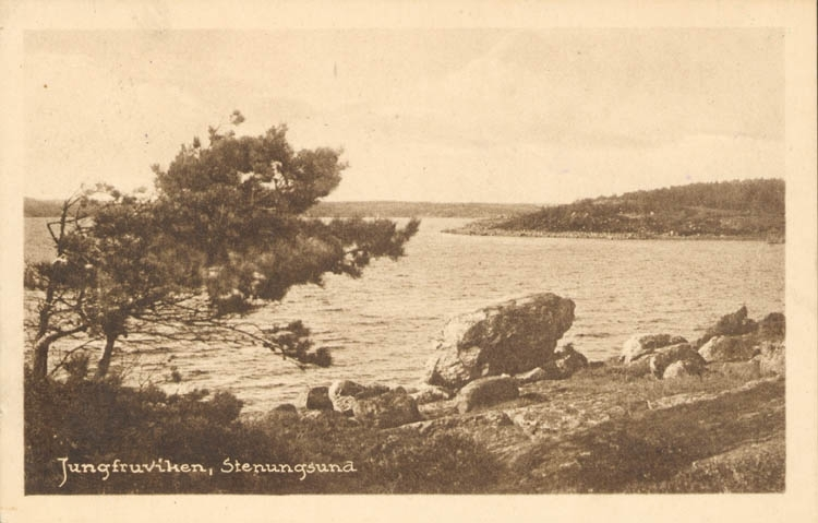 "Tryckt text på kortet: ""Jungfruviken, Stenungsund."" ::"