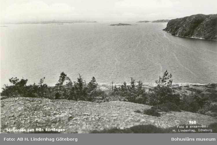 """Tryckt text på kortet: """"Sörfjorden sett från Rörtången."""""""