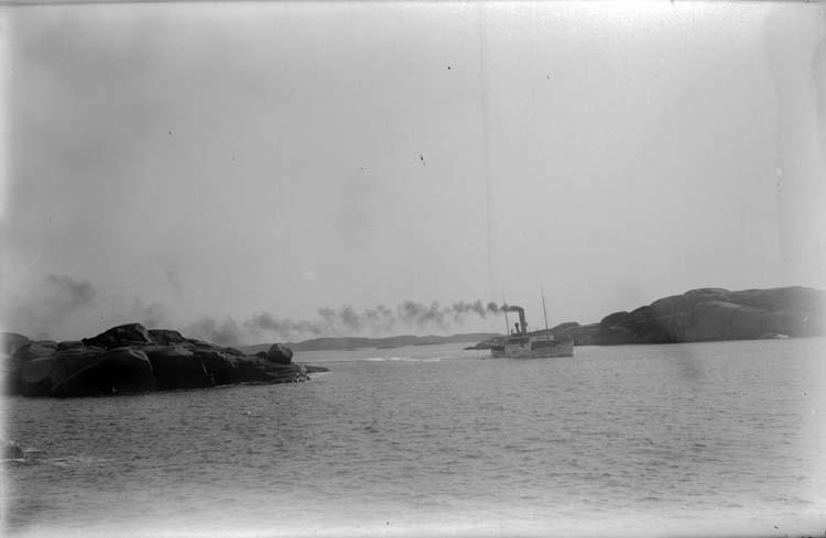 """Enligt text som medföljde bilden: """"Stångehufud 1913."""" ::"""