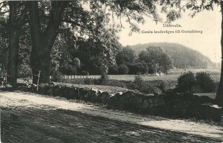 """Tryckt text på vykortets framsida: """"Uddevalla, Gamla landsvägen till Gustafsberg."""""""