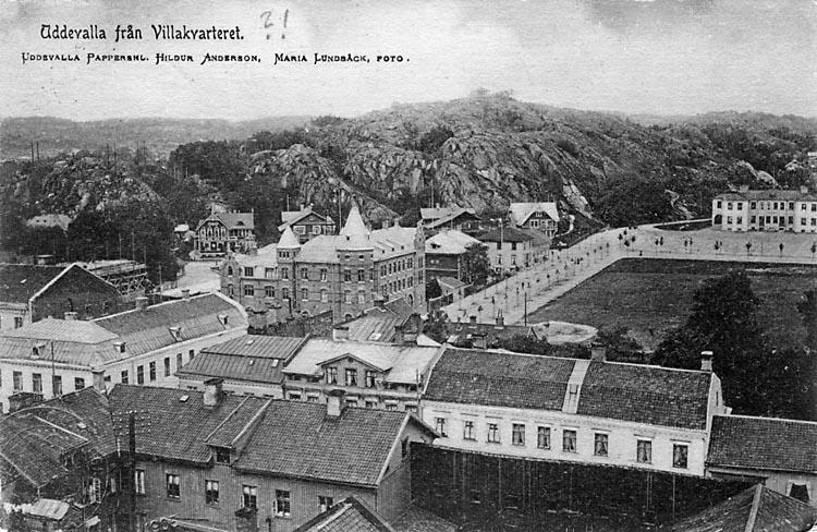 """Tryckt text på vykortets framsida: """"Uddevalla från Villakvarteret."""" ::"""
