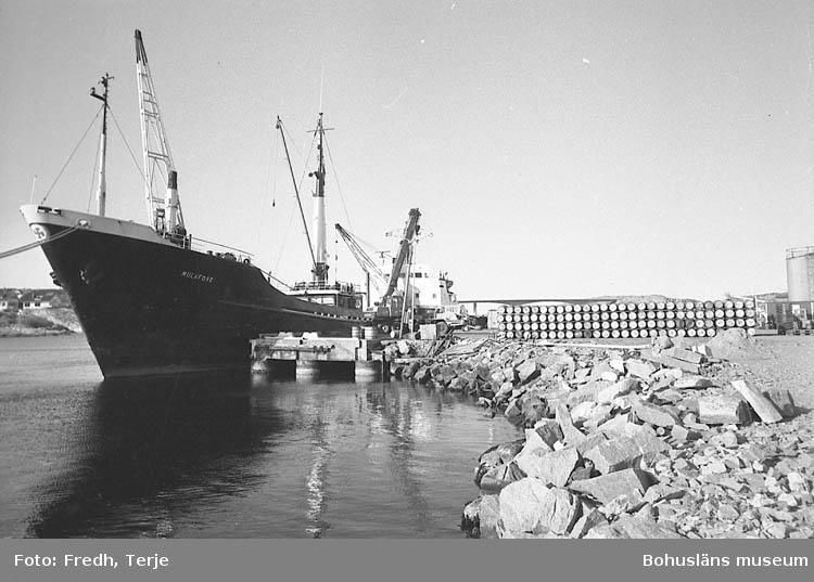 Lossning av islandssill i Kungshamn 1970