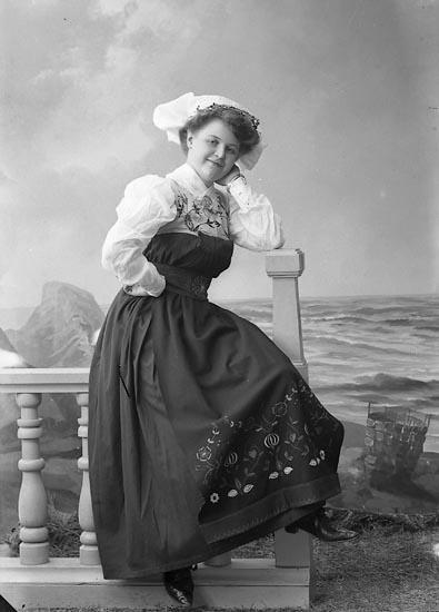 "Enlgit fotografens journal nr 2 1909-1915: ""Ekberg, Fröken Postmästare Cervins""."