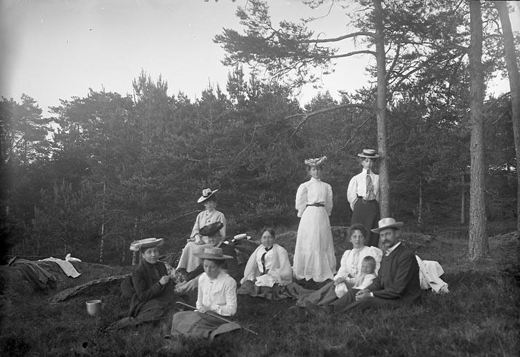 "Enligt fotografens notering: ""Herr o Fru Larsson, Hanna Kihlman, Fru Stiberg, Fr. Stiberg1907. S. Brulins skog""."