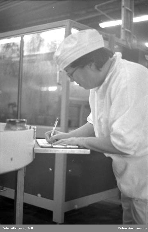 """Enligt fotografens noteringar: """"Kerstin Berndtsson kontrollerar flera gånger dagligen burkarna så att kvalitén är hög.""""  Fototid: 1996-03-14."""