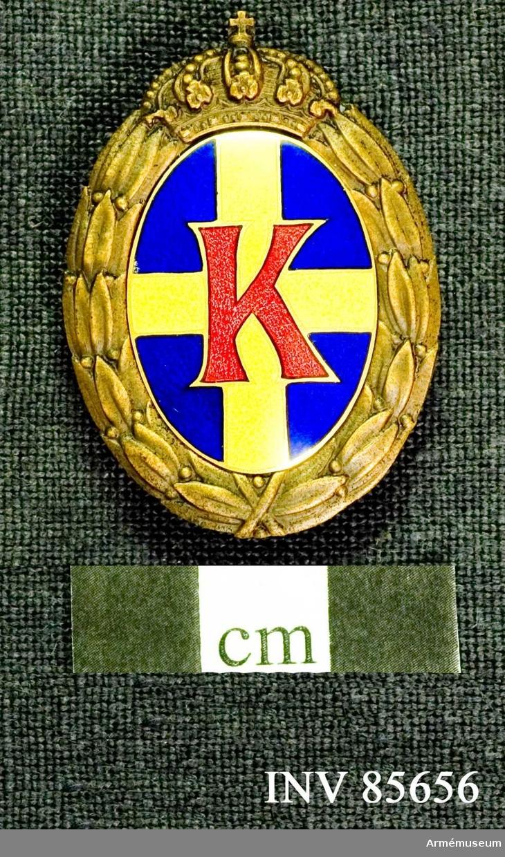 Grupp M.  Lika med n:o 16440 med den skillnad att lagerkransen är av brons.  Tilldelas medlem i landstormsförening, som uppfyller för kulsprutemärke uppställda fodringar.