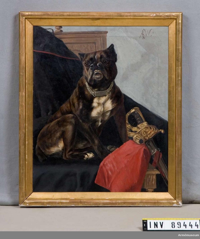 Grupp MI. Tavla med hund avporträtterad. Signerad A W. På baksidan av ramen skrivet med blyerts: Wahlgren - 48.