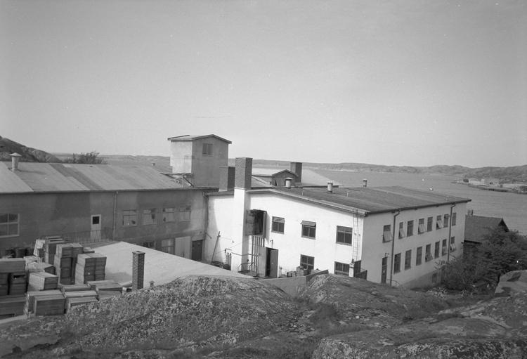 """Text till bilden: """"Gullmaren Precewing. 1953.05.07""""           i"""