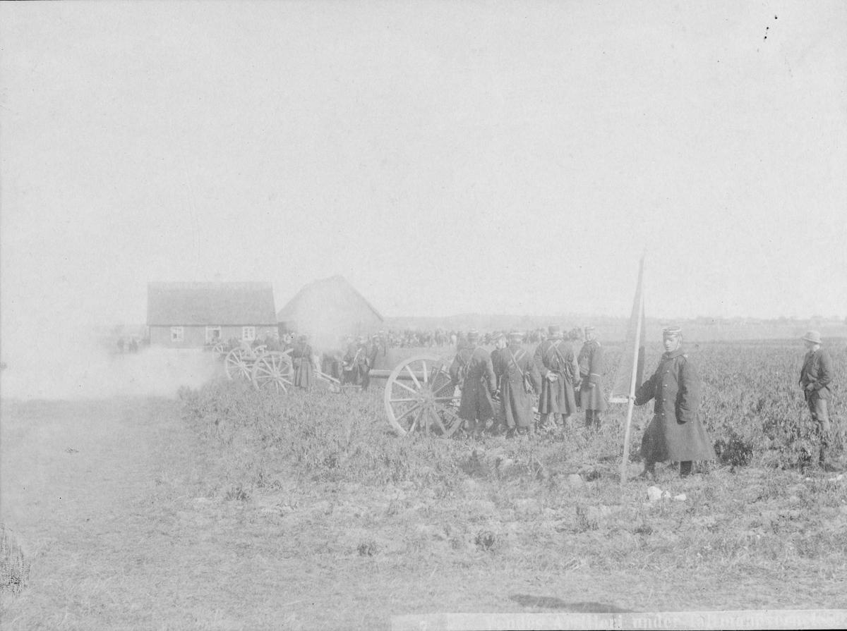 Artillerister ur Vendes artilleriregemente, A 3, avfyrar salva under fältmanöver med 8,4 cm kanon m/1881.