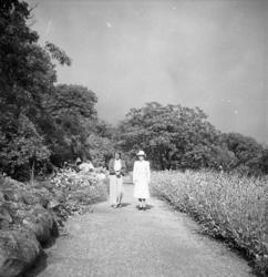 Kvinnor på promenad i trädgården, Morlanda Säteri