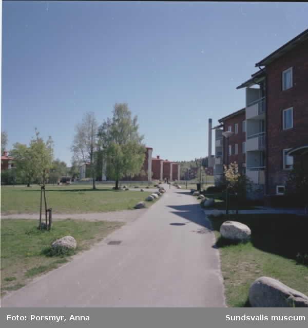 Dokumentation av Mitthems renovering, Kvarteret Vetet. Bild på bostadsområdet på Hårdvallsgatan samt människor som spelar boule.